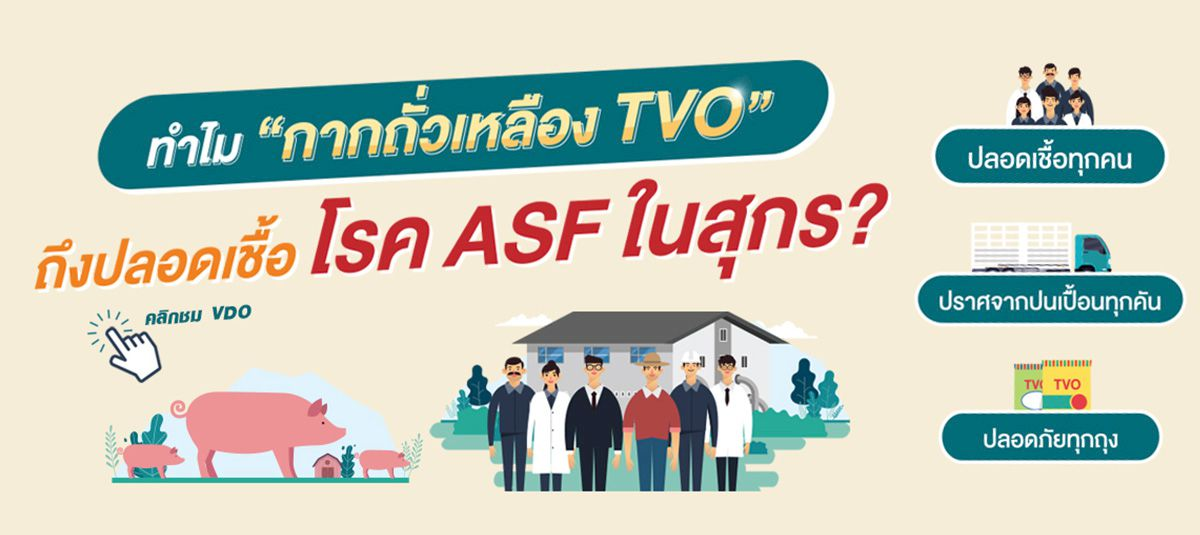 โรค ASF